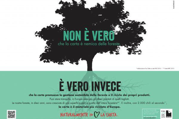 LE FORESTE EUROPEE, IN DIECI ANNI, SONO CRESCIUTE DI UNA SUPERFICIE PARI ALL'INTERA SVIZZERA