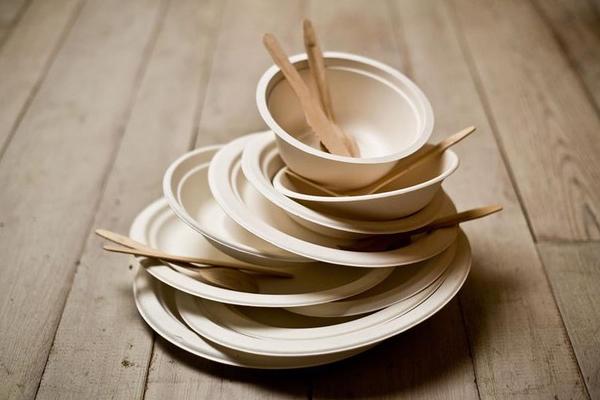 E se si utilizzassero di più i piatti di carta?