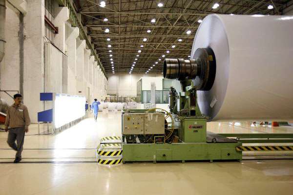 Digitale amico ambiente? Industria carta tenta sfatare miti