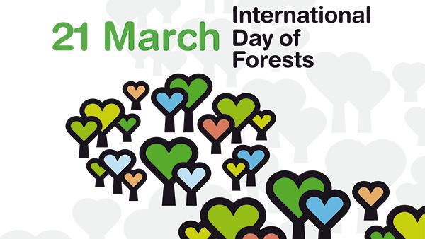 21 Marzo, Giornata Internazionale delle Foreste!