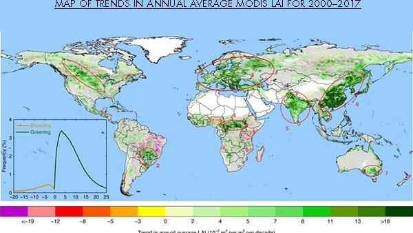 Il mondo è letteralmente un luogo più verde rispetto a vent'anni fa