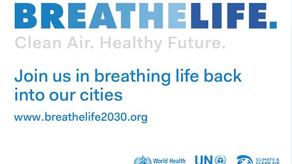 5 giugno: Giornata Mondiale dell'ambiente