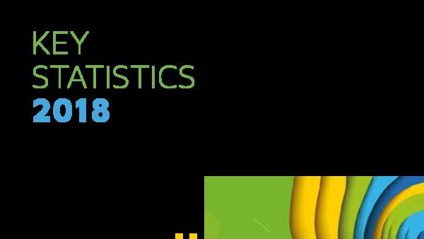 Key statistics report 2018