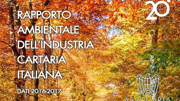 Rapporto Ambientale dell'Industria Cartaria Italiana 2019