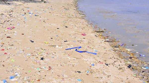 Spiagge pulite, tutti possiamo fare qualcosa, basta poco!
