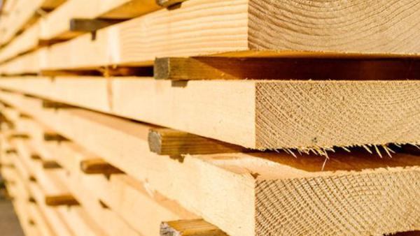 Il legno e la carta, materiali utili per ridurre le emissioni di anidride carbonica e mitigare i cambiamenti climatici