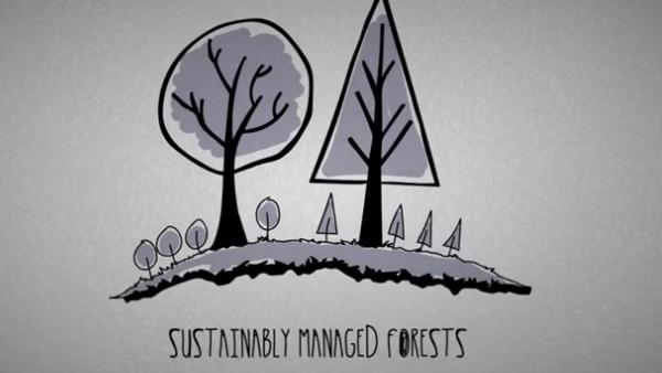 Le foreste certificate PEFC
